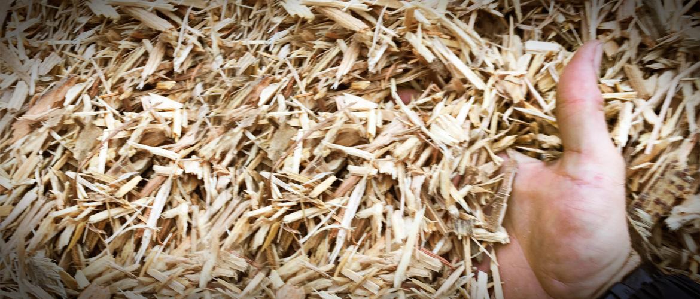 Vente biomasse Enfoui-Bec