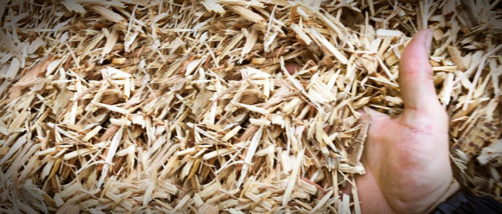 vente-biomasse-enfouibec